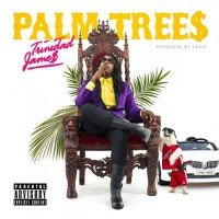 trinidad-james-palm-trees