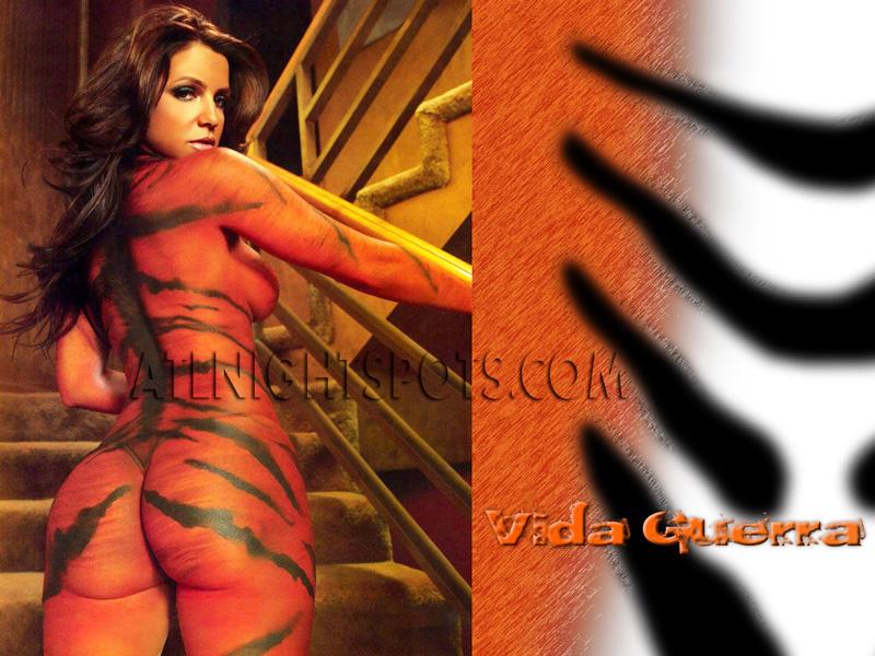 Vida-Guerra-Tiger-Paint-atlnightspots-pics-atlanta-booty